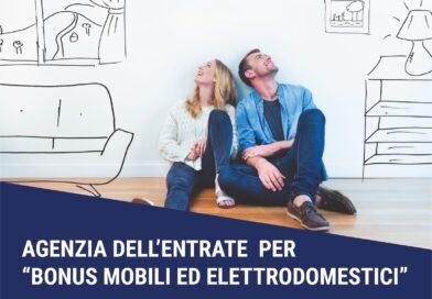 """Guida Agenzia dell'Entrate per """"Bonus mobili ed elettrodomestici"""""""